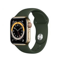 Apple Watch Series 6 40mm Gold Stainless Steel/Green Sport Band GPS + Cellular